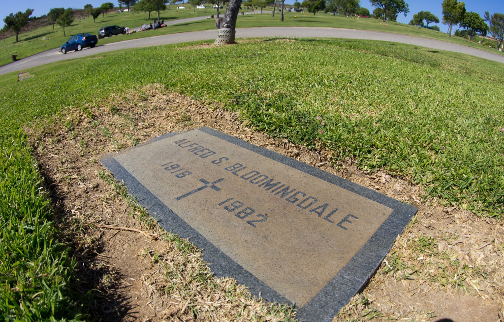 Vicki Morgan Is Buried, as Rumors of Scandal Stretch to the White Alfred bloomingdale mistress vicki morgan pictures