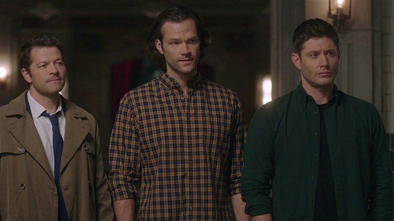 SPN1512_HLCaps_0595