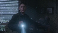 SPN1305_HLCaps_0208