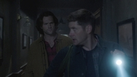SPN1305_HLCaps_0225