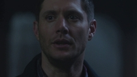 SPN1305_HLCaps_0283