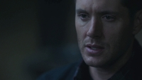 SPN1305_HLCaps_0290