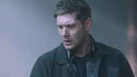 SPN1305_HLCaps_0328