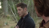 SPN1305_HLCaps_0482