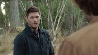 SPN1305_HLCaps_0492