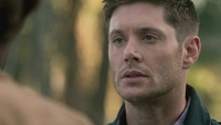 SPN1305_HLCaps_0506