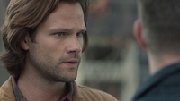 SPN1305_HLCaps_0522