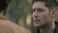 SPN1305_HLCaps_0546