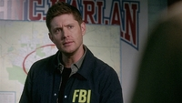 SPN1502_HLCaps_0193