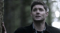 SPN1509_HLCaps_0557