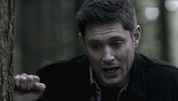 SPN1509_HLCaps_0592