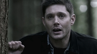 SPN1509_HLCaps_0606