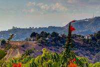 1355 Montecito Cir Montecito-large-026-1-TayBob0013Upload03-1300x867-72dpi