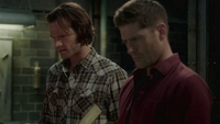 SPN1514_HLCaps_0039