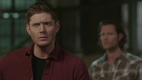 SPN1514_HLCaps_0081