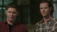 SPN1514_HLCaps_0102