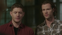 SPN1514_HLCaps_0108
