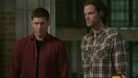 SPN1514_HLCaps_0137
