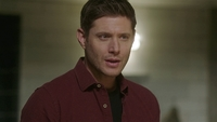 SPN1514_HLCaps_0171
