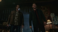 SPN1514_HLCaps_0242