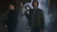 SPN1514_HLCaps_0410