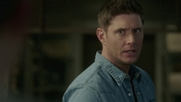 SPN1514_HLCaps_0641