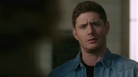 SPN1514_HLCaps_0879