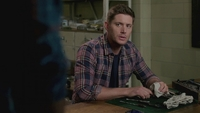 SPN1308_HLCaps_0018