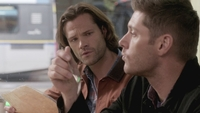 SPN1308_HLCaps_0102