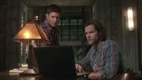 SPN1308_HLCaps_0107