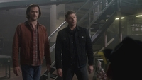 SPN1308_HLCaps_0150