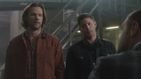 SPN1308_HLCaps_0229