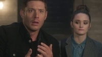 SPN1308_HLCaps_0515