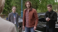 SPN1308_HLCaps_0712