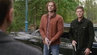 SPN1308_HLCaps_0738