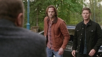 SPN1308_HLCaps_0755