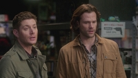 SPN1316_HLCaps_0052