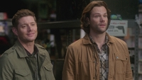 SPN1316_HLCaps_0061