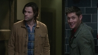 SPN1316_HLCaps_0119