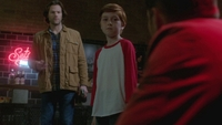 SPN1316_HLCaps_0913