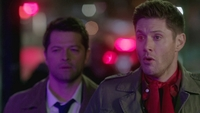 SPN1316_HLCaps_0978