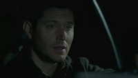 SPN1511_HLCaps_0031