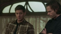 SPN1511_HLCaps_0199