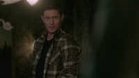 SPN1511_HLCaps_0263