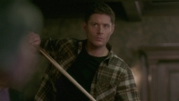 SPN1511_HLCaps_0285