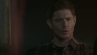 SPN1511_HLCaps_0312