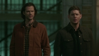 SPN1511_HLCaps_0628