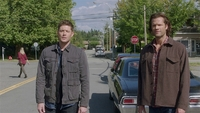 SPN1519_HLCaps_1080