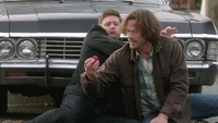 SPN1312_HLCaps_0209
