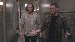 SPN1010_HighlightCaps_0086